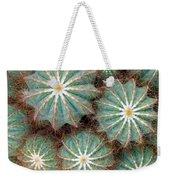 Cactus Family 2 Weekender Tote Bag
