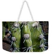 Cactus In Hawaii Weekender Tote Bag