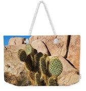 Cactus In Hidden Valley Weekender Tote Bag
