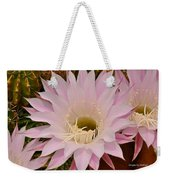Cactus In The Backyard Weekender Tote Bag
