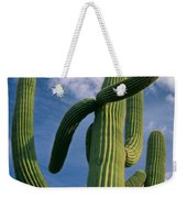 Cactus In The Clouds Weekender Tote Bag