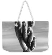 Cactus Island Salt Flats Black And White Weekender Tote Bag