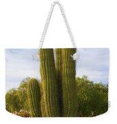 Cactus Monterey California Weekender Tote Bag