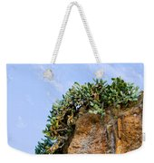 Cactus On A Cliff Weekender Tote Bag