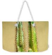 Cactus Towers Weekender Tote Bag
