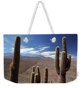 Cactus With The Andes Mountains Weekender Tote Bag