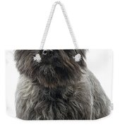 Cairn Terrier Dog Weekender Tote Bag