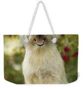 Cairn Terrier Weekender Tote Bag