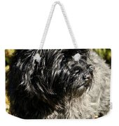 Cairn Terrier Portrait Weekender Tote Bag