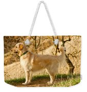 Cali Gold Weekender Tote Bag by Bill Gallagher