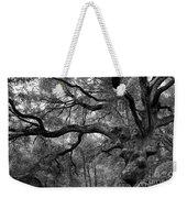 California Black Oak Tree Weekender Tote Bag