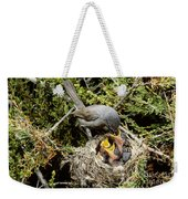 California Gnatcatcher Feeding Young Weekender Tote Bag