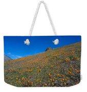 California Poppies Baby Blue Eyes And Owl Clover Weekender Tote Bag