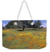 California Poppy And Eriophyllum Weekender Tote Bag