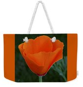 California Poppy Spectacular Weekender Tote Bag