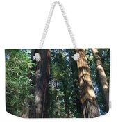 California Redwood Weekender Tote Bag