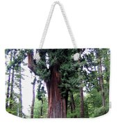 California Redwoods 6 Weekender Tote Bag