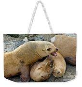 California Sea Lions Weekender Tote Bag