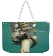 California Sea Lions Playing Sea Weekender Tote Bag