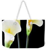 Calla Lilies In Triplicate Weekender Tote Bag