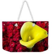 Calla Lily In Red Kalanchoe Weekender Tote Bag