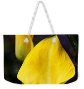 Calla Lily Portrait In Yellow And Green Weekender Tote Bag