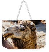 Camel Loose Lip Weekender Tote Bag