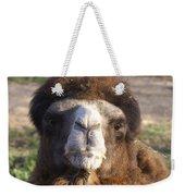 Camel Face Weekender Tote Bag