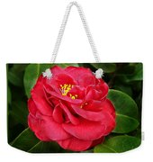 Camellia Japonica ' Dixie Knight ' Weekender Tote Bag