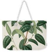 Camellia Thea Weekender Tote Bag by LFJ Hoquart