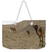 Camels At The Israel Desert -2 Weekender Tote Bag