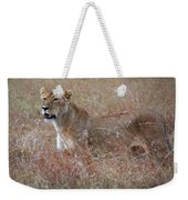 Camouflaged Female Lion In Grass Weekender Tote Bag