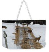 Can Deer Read Weekender Tote Bag