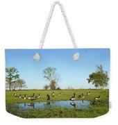 Canadian Geese Community In West Haven Weekender Tote Bag