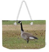 Canadian Goose Strut Weekender Tote Bag
