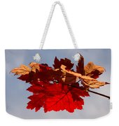 Canadian Maple Leaves In The Fall Weekender Tote Bag