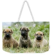 Canary Dog Puppies Weekender Tote Bag