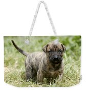Canary Dog Puppy Weekender Tote Bag