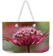 Botanica .. Candy Weekender Tote Bag