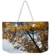 Cannon On Top Of Lookout Mountain Weekender Tote Bag by Bruce Roberts