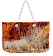 Canyon De Chelly - Spring II Weekender Tote Bag