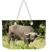 Cape Buffalo  Uganda Weekender Tote Bag