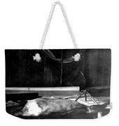 Capeevanshut-antarctica-g.punt-18 Weekender Tote Bag