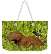 Capybara And Smooth Billed Ani Weekender Tote Bag