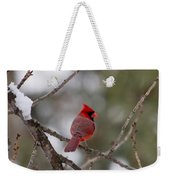 Cardinal - A Winter Bird Weekender Tote Bag