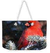 Cardinal And Evergreen Weekender Tote Bag