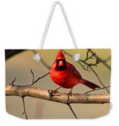 Cardinal Beauty Weekender Tote Bag