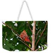 Cardinal Bird Baby Weekender Tote Bag
