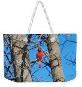 Cardinal Bird  Weekender Tote Bag