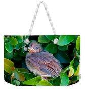 Cardinal Chick Weekender Tote Bag